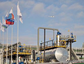 Апелляционный суд вернул «Башнефти-Полюсу» лицензию на месторождение Требса и Титова