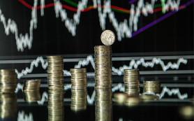 Минэкономразвития спрогнозировало рост годовой инфляции до 17,4% к июню