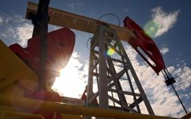 Fitch: западные санкции представляют большую угрозу для добычи нефти РФ, чем цены на нефть