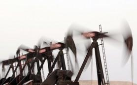 Венесуэла предлагает странам ОПЕК создать новый сорт нефти