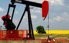 Нефть дешевеет в ожидании успеха переговоров «шестерки» и Ирана
