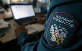 Россияне смогут отчитываться о доходах в ФНС без посещения инспекций с 2016 года