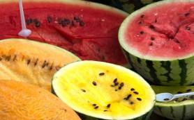 В Астрахани будут выращивать разноцветные арбузы