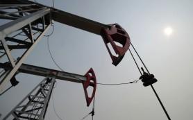 Иран ведет переговоры по разработке месторождения нефти Азадеган