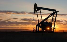 Цена нефти сорта WTI выросла на ожиданиях снижения объема добычи сланцевой нефти