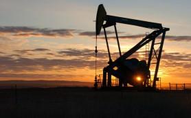 Мировые банки не видят в 2016 году дорогой нефти