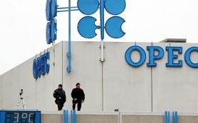 На встрече ОПЕК могут обсудить сокращение добычи нефти на уровне до 5%