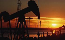 Цена нефти Brent поднялась выше 43 долларов за баррель