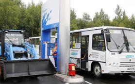 Газомоторный транспорт предлагают пустить на выделенку