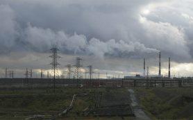Бизнес пожаловался Путину на углеродный налог
