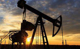 Нефть дорожает из-за переоценки данных по запасам в США