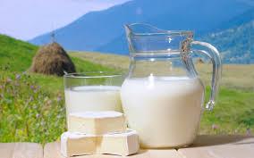 Натуральные молочные продукты, закупка оптом