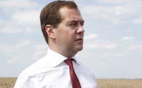 Медведев в Курской области проведет встречу с представителями садоводческих хозяйств
