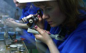 Огранщиков алмазов придется спасать льготами из-за вступления в ВТО
