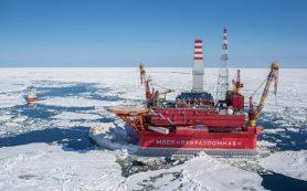 Правительство разрешило осваивать шельф только «Роснефти» и «Газпрому»