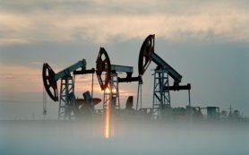В Ливии не будут замораживать добычу нефти