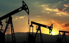 Нефть марки Brent поднялась выше $51 за баррель