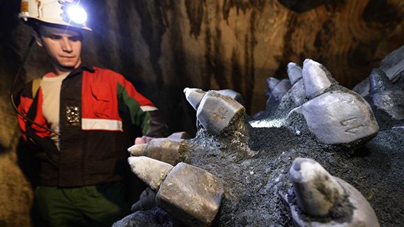 «Алроса» уйдет искать алмазы в Африку