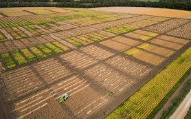 Аграрии против скупки земель иностранцами