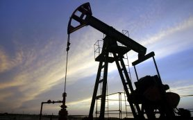 ОПЕК понизила прогноз по спросу на нефть к 2040 году на 0,9%