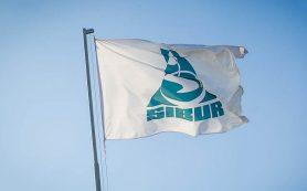 «Сибур» в 2016 г. инвестировал в НИОКР более 600 млн руб.