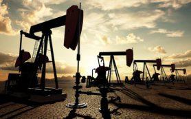 Вагит Алекперов не ожидает резких скачков цен на нефть в 2017-м