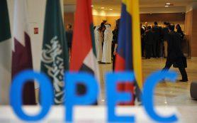 СМИ: ряд стран ОПЕК обсуждают еще большее сокращение объемов добычи