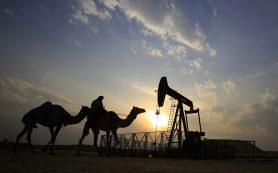Саудовская Аравия: все участники сделки о нефтедобыче согласны продлить ее на девять месяцев