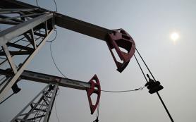 Эксперты рассказали, как кибератаки повлияли на цены на нефть