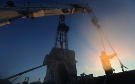 Нефтегазовые компании в 2017 году вложат 45 млрд руб. в разведку на шельфе РФ