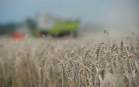 Минсельхоз предложил страховать аграриев от затяжных дождей