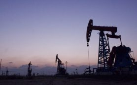 Новак предсказал скорую стабилизацию нефтяного рынка