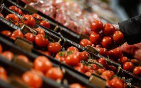 Ткачев: в России разлюбили турецкие помидоры