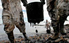 МЭА рассказало, когда рост добычи нефти в России достигнет пика