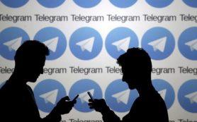 Стало известно насколько упали просмотры Telegram-каналов после блокировки