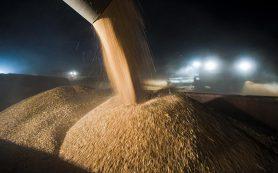 Сельское хозяйство поставят на особый контроль