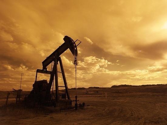 ОПЕК приготовила сенсацию, грозящую обрушить цену нефти