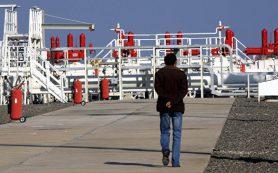 «Газпром» сообщил об аресте своих акций в операторе «Голубого потока»