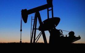Отказ от доллара в расчетах на нефть не поможет