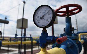 Китай будет наращивать объемы поставок газа из России и Казахстана