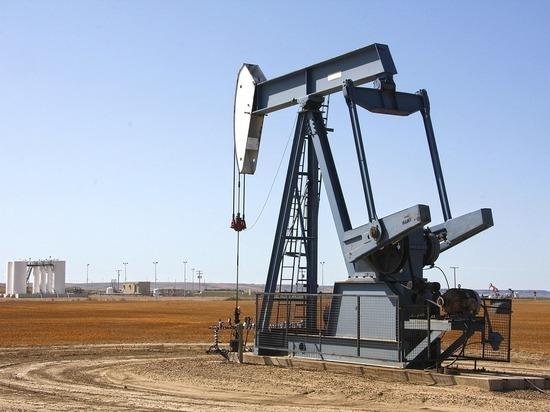 Прогноз цен на нефть: подорожает до $100