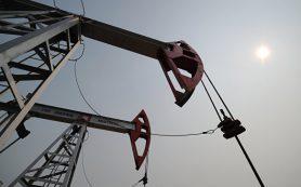 Цена на нефть снизилась до 83,33 доллара за баррель