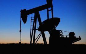 WSJ: саудиты проанализируют вопрос о роспуске ОПЕК