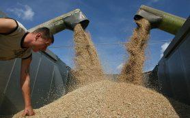 Несырьевой экспорт вырос за счет пшеницы, стали и удобрений