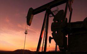 Венесуэла увеличила экспорт нефти в Индию и Европу