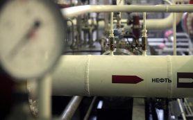 Германия поблагодарила Rosneft Deutschland за решение проблем с «Дружбой»