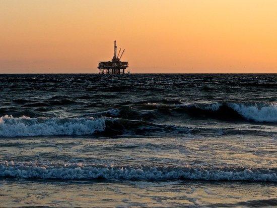 Предсказана цена нефти при продлении сделки ОПЕК+