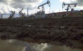 Власти РФ учредили компанию «Росзарубежнефть»