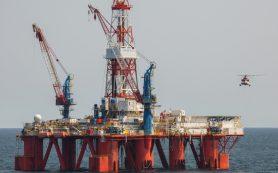 «Роснефть» и «Яндекс» запустят бесконтактную оплату бензина на АЗС