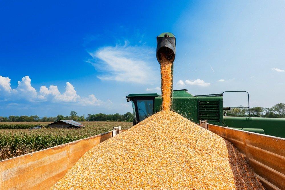 Минсельхоз доработает механизм квотирования экспорта зерна